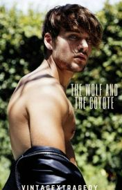 The Wolf and the Coyote (sequel to the other werecoyote) by ashlee_lynn9