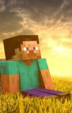 Minecraft in lumea nemaivazuta by lorax2004