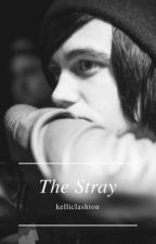 The Stray || Kellic ✔ by lxshtonmxlum