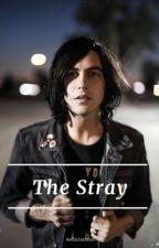 The Stray || Kellic ✔ by kelliclashton