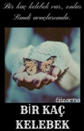 Bir kaç kelebek.... by Glzarnal