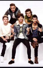 Fakten über One Direction by -BellaPrincipessa-