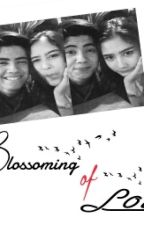 Blossoming of Love by dtnggrn