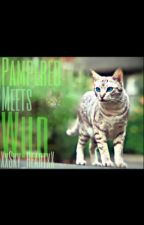 Pampered meets Wild by -SkyHeart-