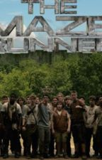 Maze Runner X Reader Imagines by MissNotice