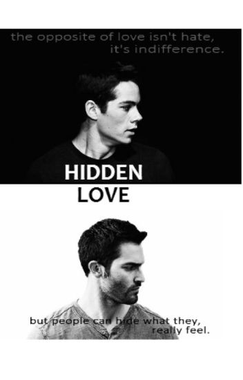 hidden love [sterek]
