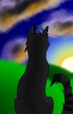 Warrior cats drawings and others by Jaywing2003