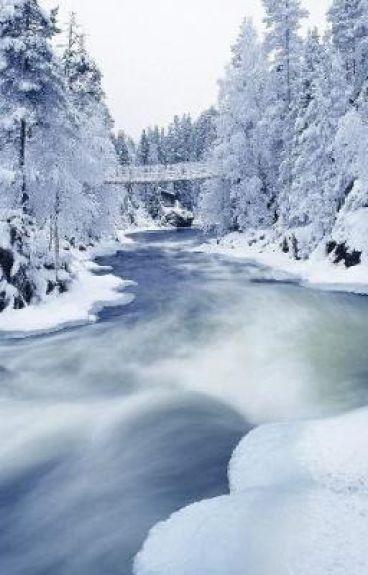 Brisk Winter