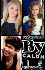 adopted by calum hood by averyxmarais