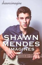 Shawn Mendes Imagines by shawnsimagine