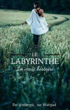 Le labyrinthe - la vraie histoire by espece_de_fiole