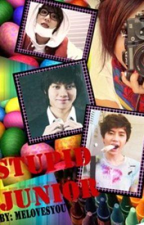 Stupid Junior (Written by Melovesyou) by rmyvna