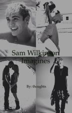Sam Wilkinson Imagines by thcughts