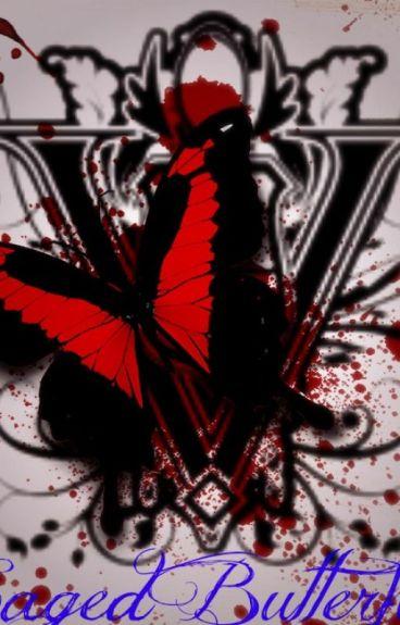 Twilight Saga: Caged Butterfly (Demetri Volturi X Reader)