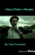 Harry Potter x reader by Time-Turner223