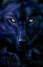 My White Werewolf mate/Sam wilkinson/bwwm by YOLOnotPrincess