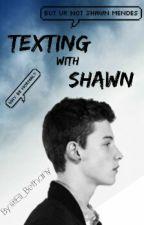 Texting with Shawn by El_linka