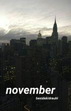 November ✧ Shawn Mendes [PAUSADA] by besidekidrauhl