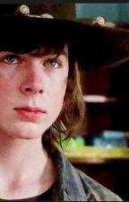 Keep you safe ~(Carl Grimes x Reader: TWD) by romishin