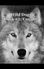 ON HOLD//Wild Dogs// Book #2: Caught by swagdog120