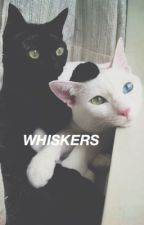 whiskers → m.c by kitten-muke