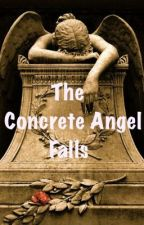 The Concrete Angel Falls - Completed by JessBakerWorks