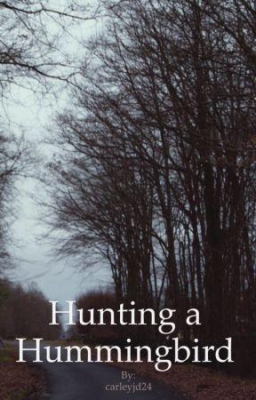 Hunting a Hummingbird by carleyjd24