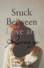 Stuck Between Love and Revenge [editing] by itsJellyanna