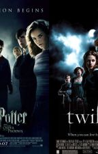 Harry Potter vs Twilight by HarryPotterFan611
