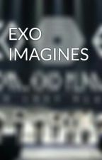 EXO IMAGINES Oppa!!! by NinayooK