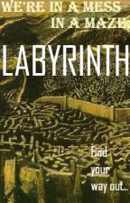 We're in a MESS in a MAZE; LABYRINTH by DefenseKeeper