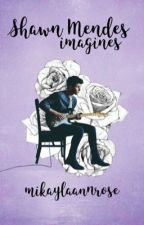 Shawn Mendes Imagines | Completed by mikaylaannrose