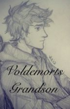 Voldemorts Grandson by snakesulfer