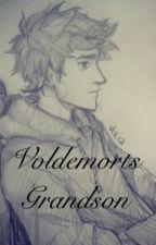 Voldemorts Grandson by snakesulfer
