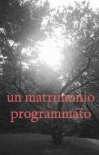 un matrimonio programmato by mm-lb-kt