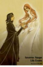 In honour of Severus Snape by bumblebee_5n4p3