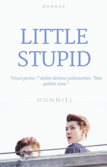 Little Stupid