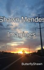 Shawn Mendes Imagines by ButterflyShawn