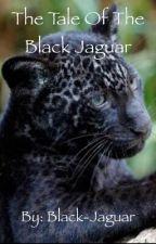 The Tale of Black Jaguar (Young Justice Fanfic) by Black-Jaguar