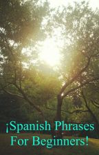 Spanish phrases for beginners by TheDarksLight