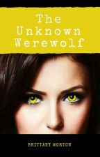 The Unknown Werewolf (A TVD Fanfic) by _BrittanyJo2002_
