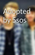 Adopted by 5sos by _haleyiswerid_