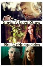 Sorta A Love Story (A Deanlena Fanfic) by sidneymflores
