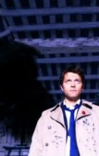 His Wings - Castiel x Reader by AngelMariaKurenai