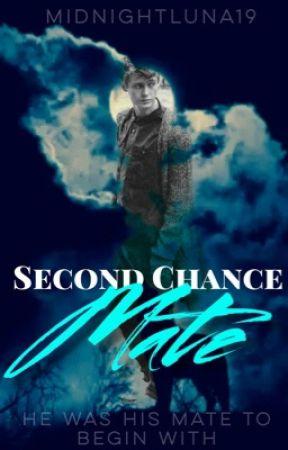 His Second Chance Mate BxM Bpreg