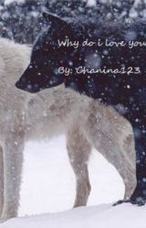 Why do I love you? (COMPLETED!!! In editing process) by chanina123