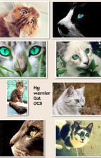 Warrior OCs by miraculousbug