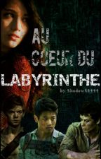 Au cœur du Labyrinthe (Newt) by ShadowS4444