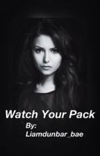 Watch your pack(Teen wolf fanfic) by smile_brendon