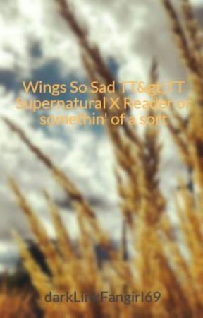SPN X Reader : An Archangel's Humanity - Chapter 2: Mother and Son's